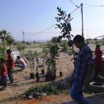 """El proyecto """"Un millón de árboles"""" se presenta en el Valle del Jordán"""