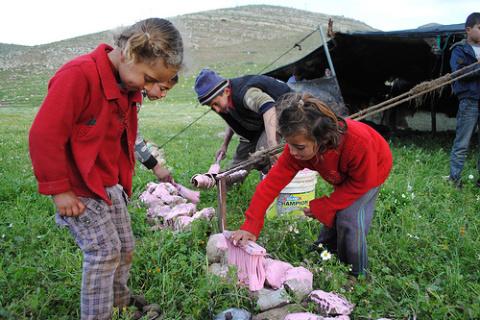 Derecho a la educación de los niños palestinos