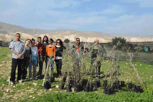 Tree planting Fasayil al Wusta 3Feb15