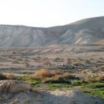 Ancora un volta, Israele confisca terra palestinese nel villaggio di Fasayal
