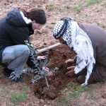 Friends celebrate the life of Simon Levin (1974-2011) with olive tree planting in Al Hadidya