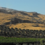 Occupation government promoting land theft in the Jordan Valley