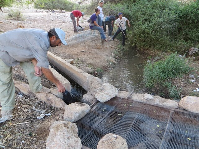 Water clean-up in Fasayil