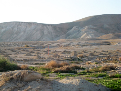 Palestinian land confiscated in central Jordan Valley
